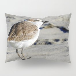 Snowy Plover Pillow Sham