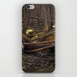 Dried up stream iPhone Skin