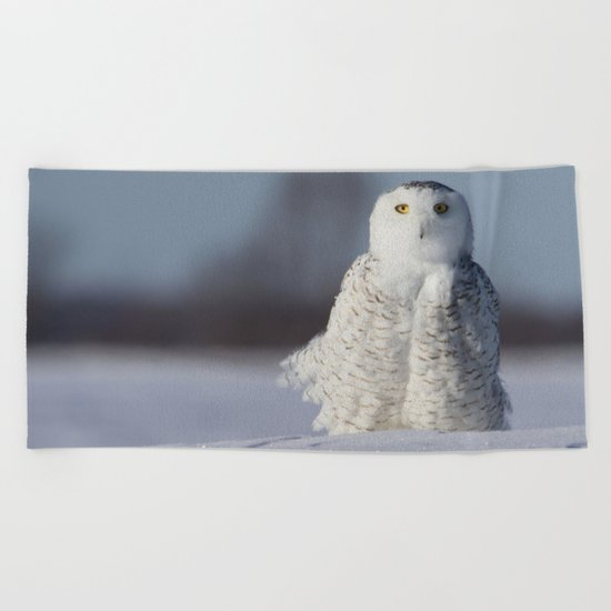 Saint Snowy Beach Towel