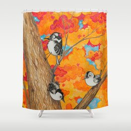 Fall: Two Nuthatches and a Downy Shower Curtain