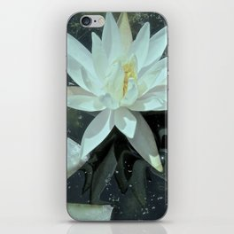 Starry Night Water Lily iPhone Skin