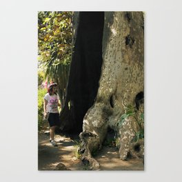Fairy in a Tree! Canvas Print
