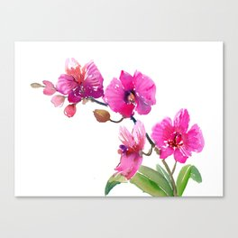 Pink Orchids, pink room floral orchid design Canvas Print