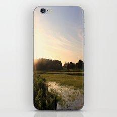Marsh iPhone & iPod Skin