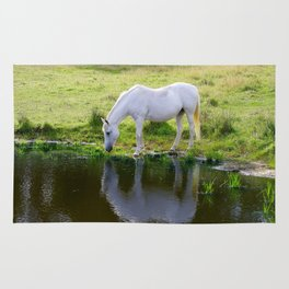 Wild Horse Drinking from a Pond Rug