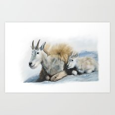 goat snow and cub Art Print