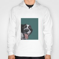 border collie Hoodies featuring Maeby the border collie mix by Pawblo Picasso