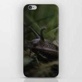 Home is where you park it! iPhone Skin