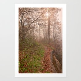 Misty North Point Trail Art Print