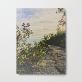 Evening walks Metal Print