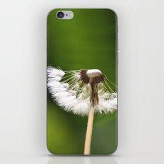 My Interrupted Wish iPhone & iPod Skin