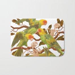 The extinction of the Carolina Parakeet. Bath Mat
