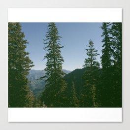 Mt. Timpanogos Wilderness Canvas Print