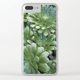 Succulents in Green Clear iPhone Case
