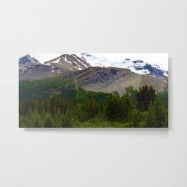 Views along the Wilcox Pass Hike in Jasper National Park, Canada Metal Print