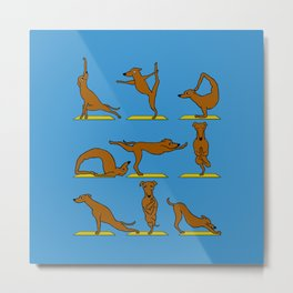 Greyhound Yoga Metal Print