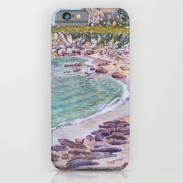 Harbor Seals at Hopkins Beach iPhone Case