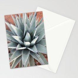 Sedona Succulent Stationery Cards