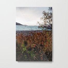 Lake Tekapo (1) Metal Print