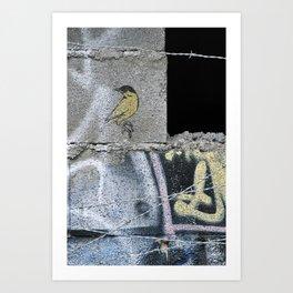 Barbed Bird Art Print