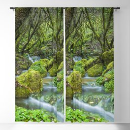 Deep in the green forest II Blackout Curtain