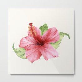 Tropical Pink Hibiscus Flower Metal Print
