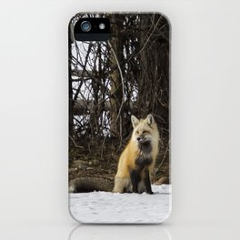 Beautiful Red Fox - No. 4 iPhone Case