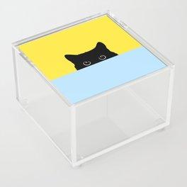 Kitty Acrylic Box