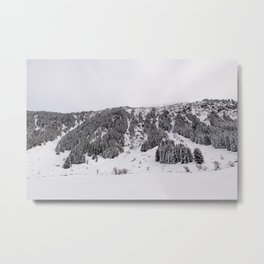 White Winterscapes III Metal Print