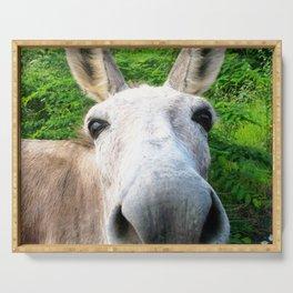 Watercolor Wild Donkey 01, Hi! Serving Tray
