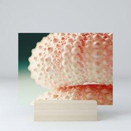sea urchin series no 2 Mini Art Print