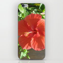 Large Red Hibiscus Flower iPhone Skin