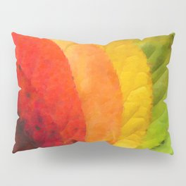 Collection beautiful colorful autumn leaves Pillow Sham