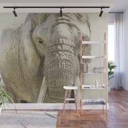 Elephant Photography | Wildlife Art | African | Nature | Animal Wall Mural