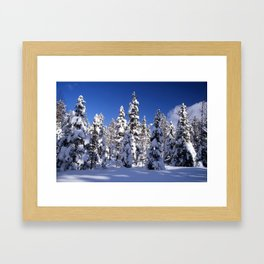 Snow covered trees in the forest. Winter day with blue sky. Framed Art Print