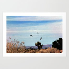 Birds in the Sky, Joshua Tree. 35mm Film Art Print