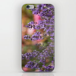 Lavender flowers iPhone Skin