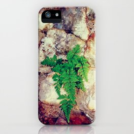 Fern Growing in Geodes at the Grotto iPhone Case
