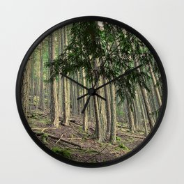 WARM AUTUMN EVENING FOREST Wall Clock