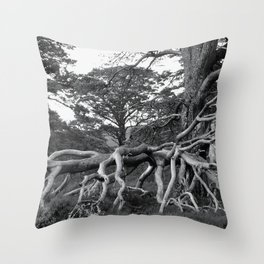 'Scottish Roots' Throw Pillow