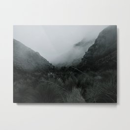 Into the Wilderness Metal Print