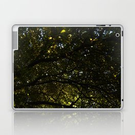 Silhouetted Leaves Abstract Laptop & iPad Skin