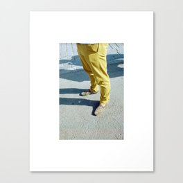 Real or Faux? Canvas Print