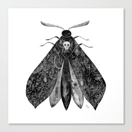 The Moth and All His Friends Canvas Print