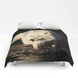 The lone sentinel Comforters