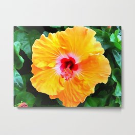 Hibiscus Orange 3 Metal Print