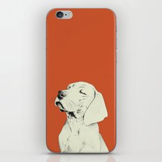 Nufa iPhone & iPod Skin