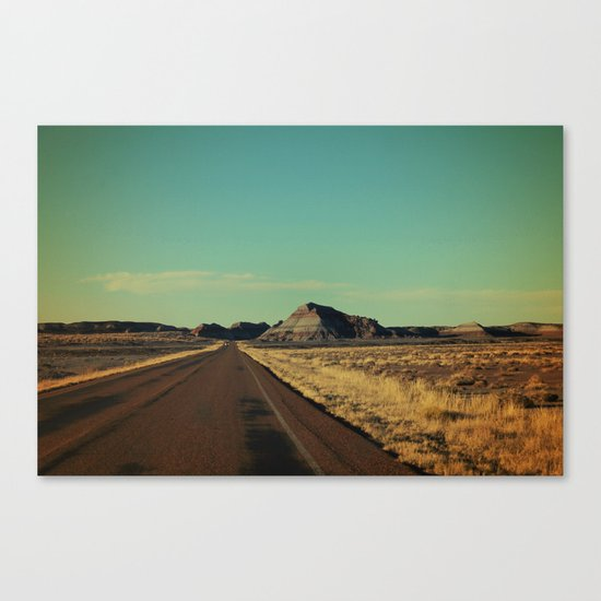 Lone Encounter Canvas Print