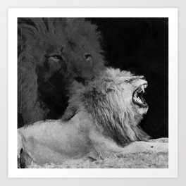 Lion Black and White  Mixed Media Digital Art Art Print