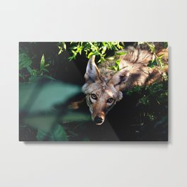 Here's Looking At You, Kid Metal Print